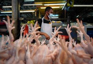 الصين تقرر منع ذبح الدواجن أو بيعها حية في الأسواق