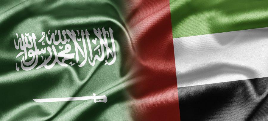 علما السعودية والامارات
