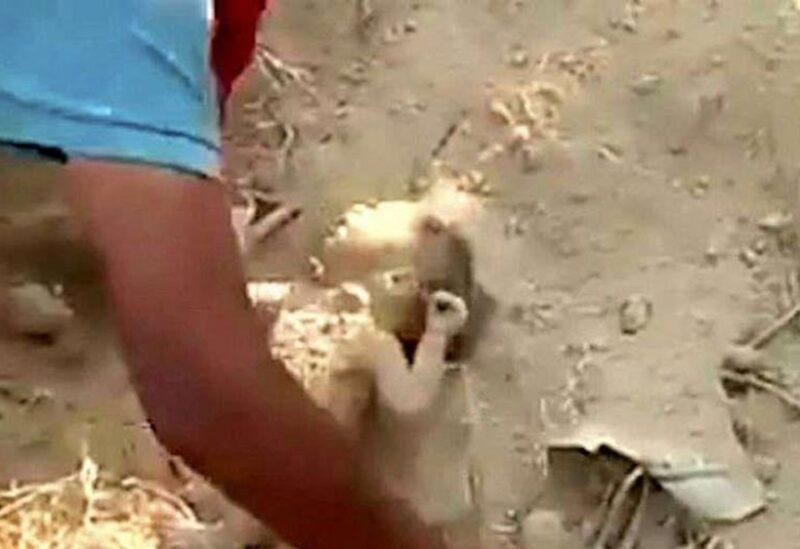 انقاذ طفل رضيع دفن حيا بالهند